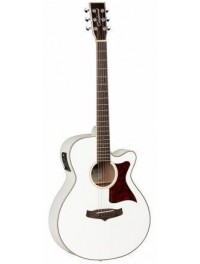Guitarras Acústicas Eletrificadas