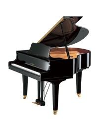 Pianos Cauda