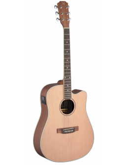 Guitarra Acústica Eletrificada James Neligan ASY-DCE