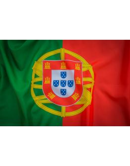 Bandeira Nacional Impressa Polyester 135x90cm